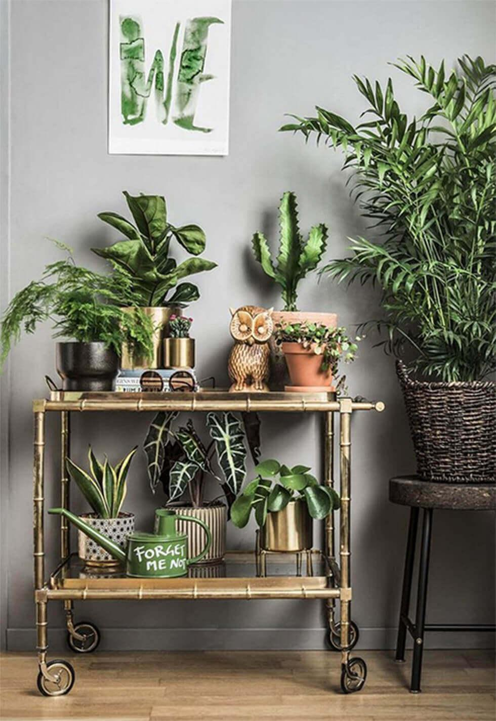 Rolling cart filled with several pots of plants and home decor.