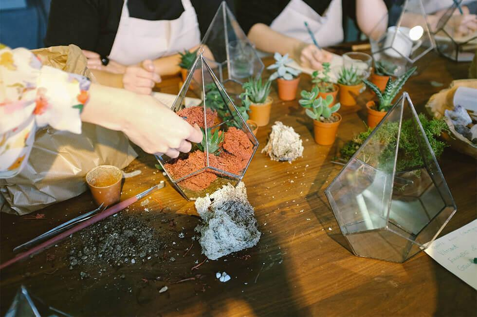 Glass terrariums being filled with soil and succulents.
