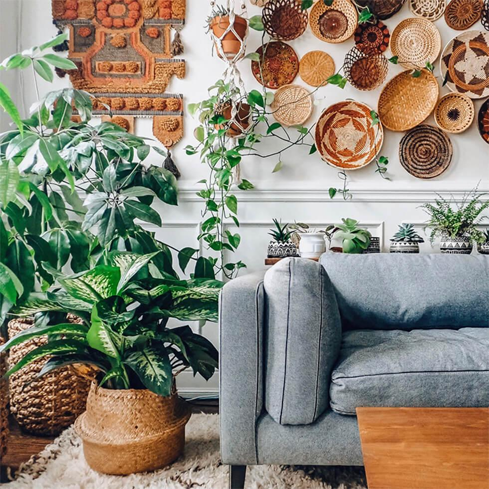Trailing and potted plants in a neutral modern boho interior