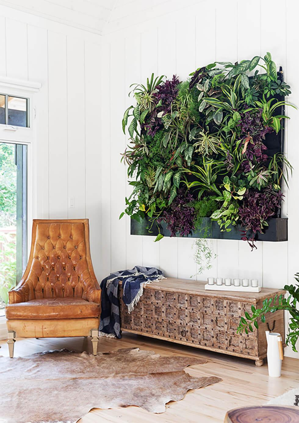 Clean white living room with an indoor plant feature wall
