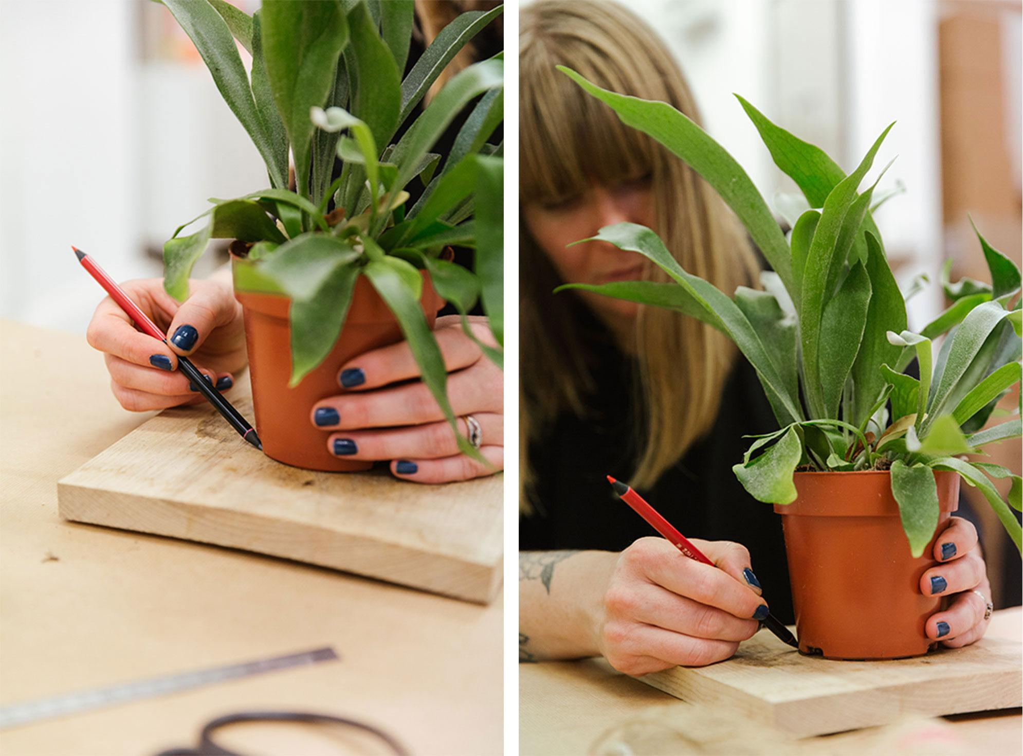 Tracing the outline of the plant pot on the wooden board with a pencil