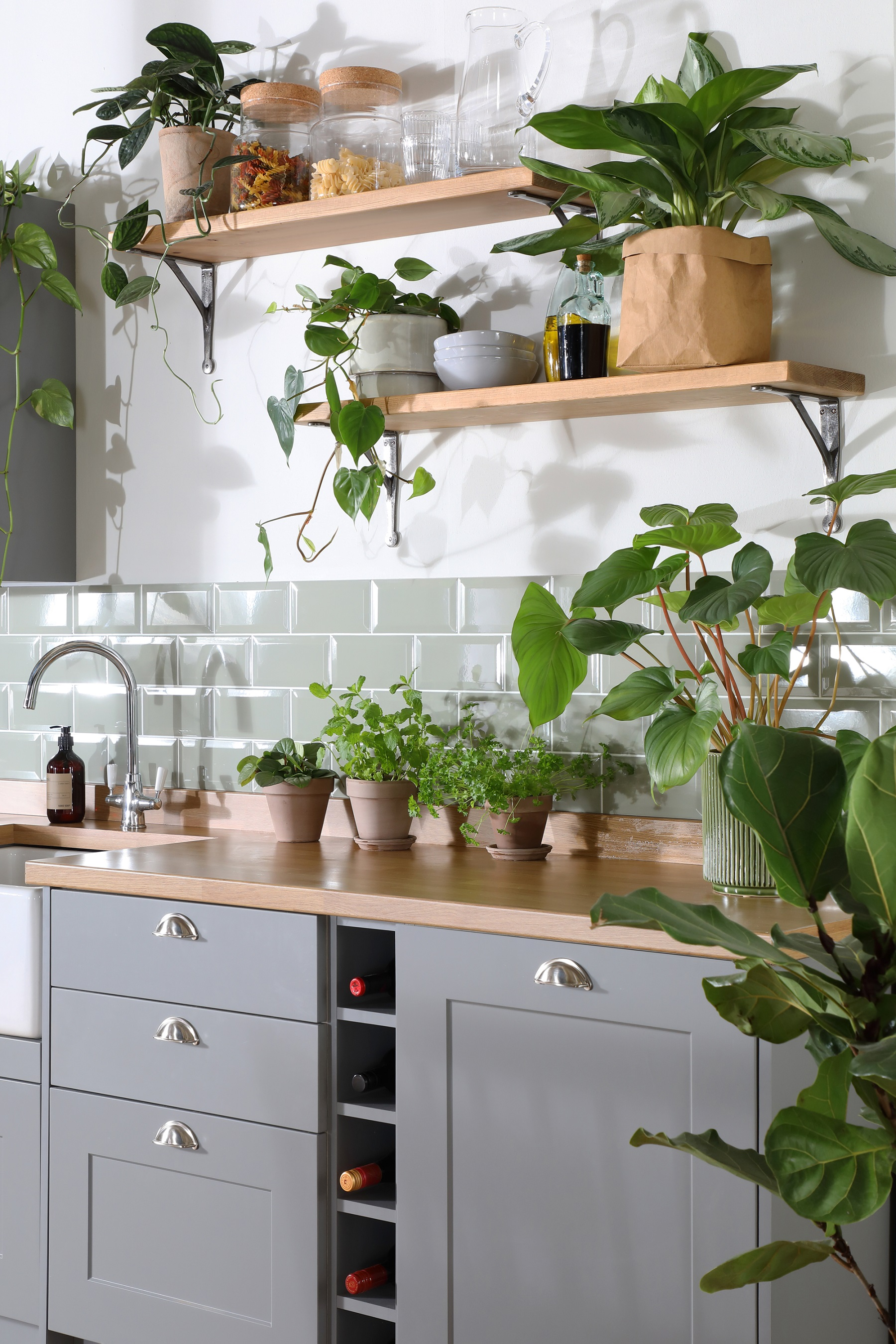 Kitchen island with many indoor plants and greenery