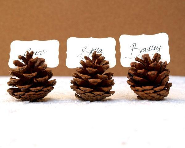 Pinecone nameholders