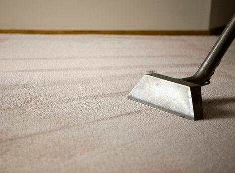 Carpet being cleaned.