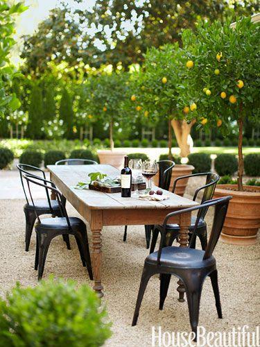 Outdoor dining area with wine and trees.