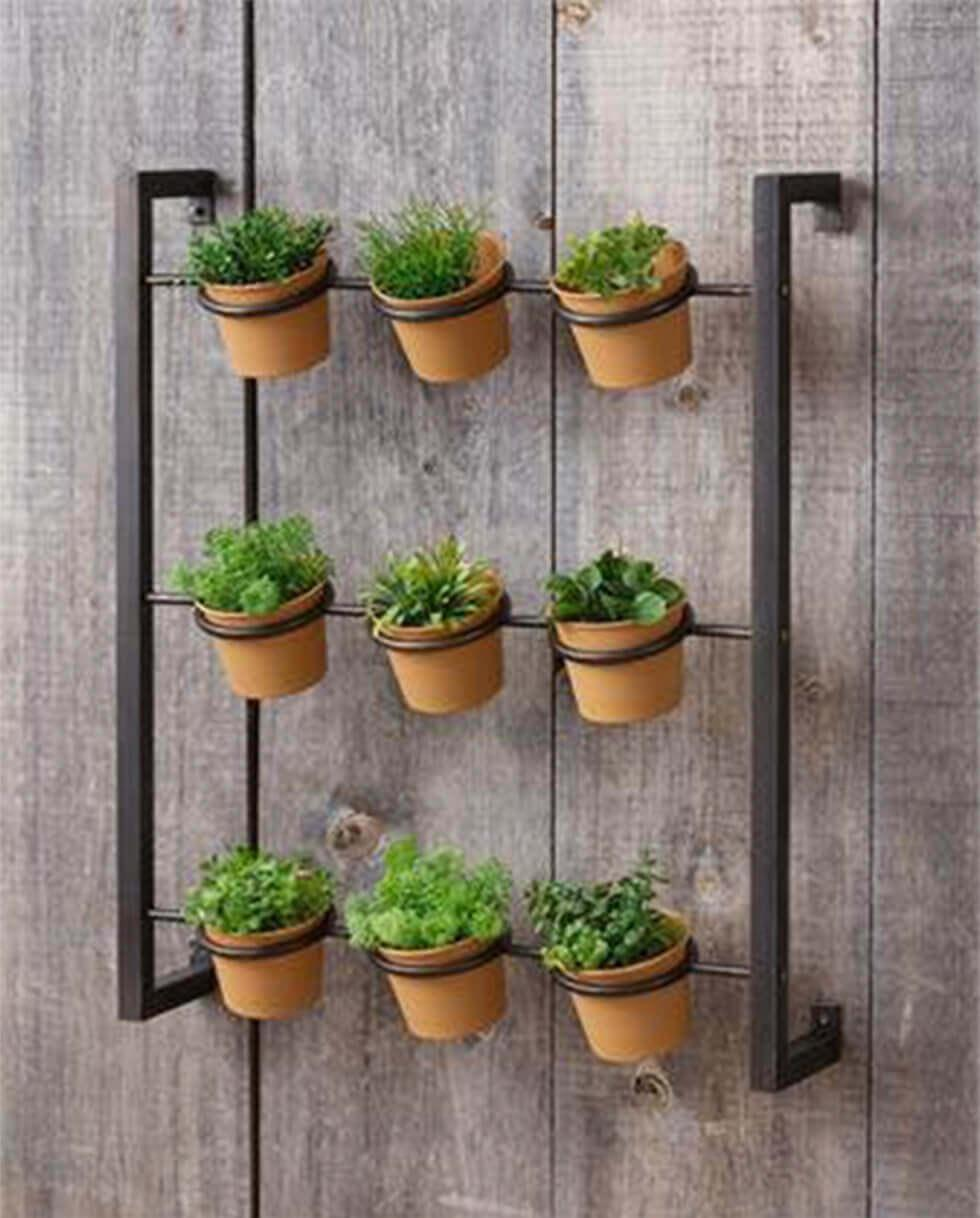 Wall-mounted herb garden on a wood pallet wall.