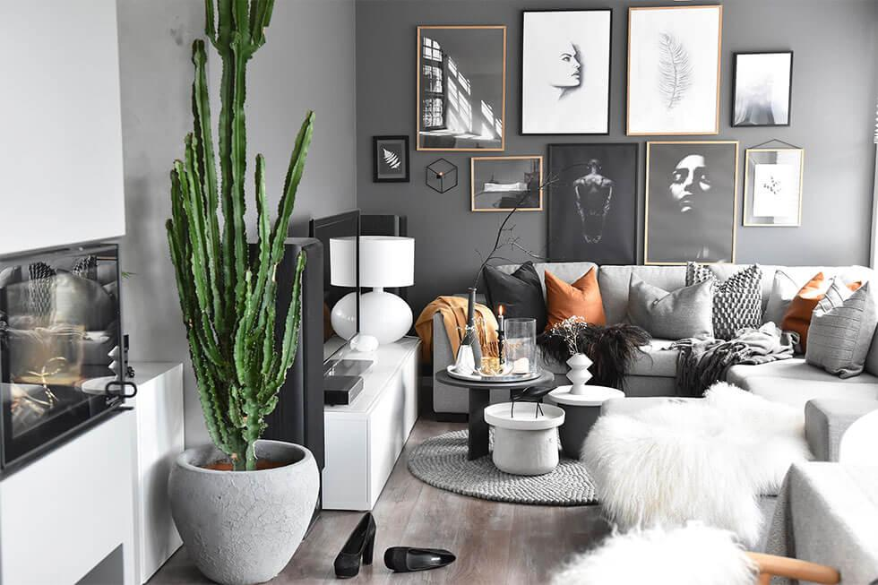 Grey living room with a cactus, white fluffy throws, and pillows in black and brown.