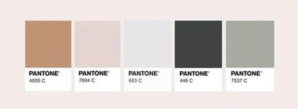 neutral colour palette board