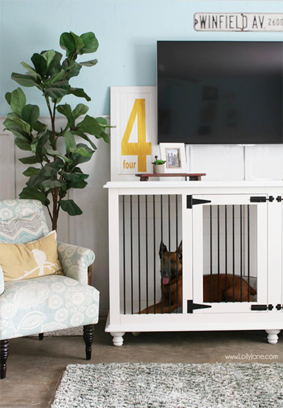 Dog in a functional crate in a dog-friendly living room