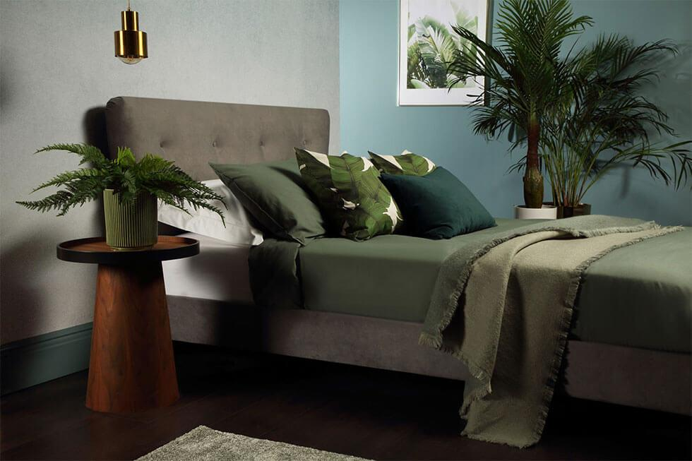 Grey bedroom with green feature wall and lots of indoor plants