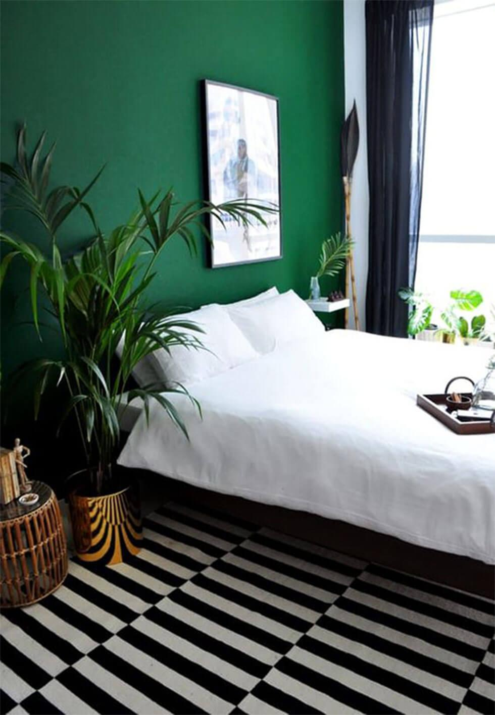 Modern bedroom with green feature wall, statement striped rug and large plants