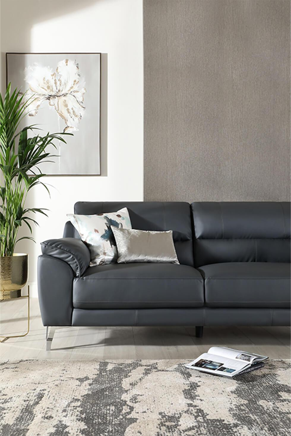 A neutral grey and beige living room with a black leather sofa, patterned rug and indoor plant