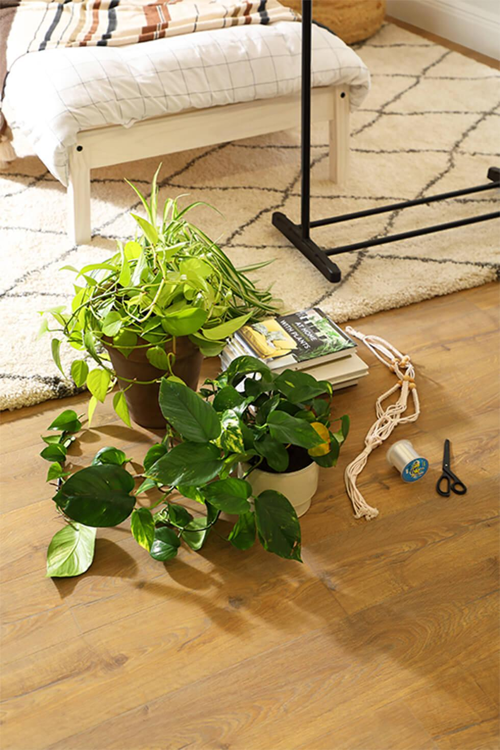 Things you will need to make a plant room divider