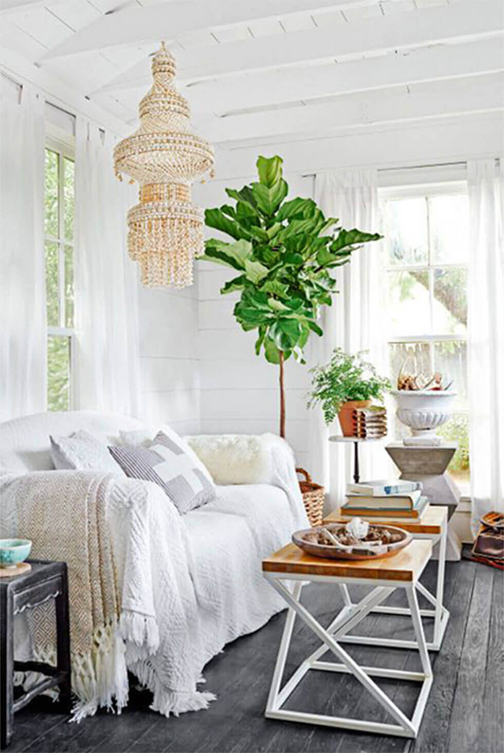 Bohemian white living room with natural chandelier and large plant.