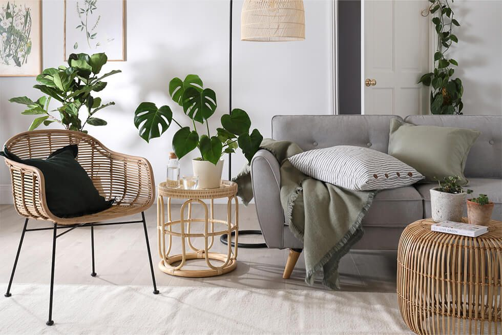 A relaxing living room with a grey sofa, rattan armchair and potted plants