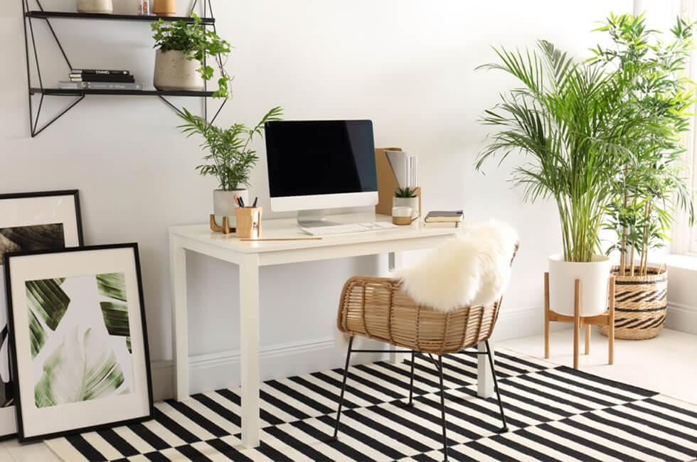 Home office with white desk and indoor plants