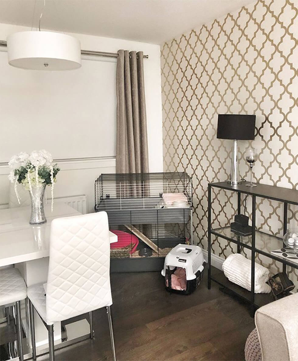 pet cage in an open plan living space