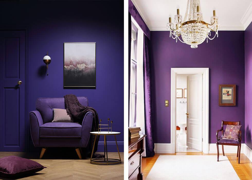 Rooms with deep ultra violet walls and matching furniture.