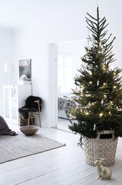 White room with a Christmas tree